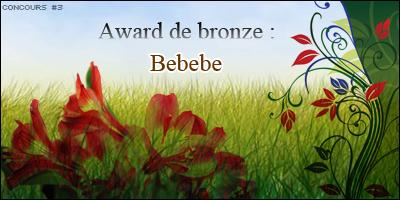 {003 Créations Gagnantes Bebebe-4ad4c3